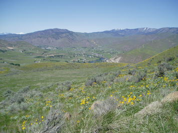 Fairview Canyon Lots (2) with 164.98 Acres